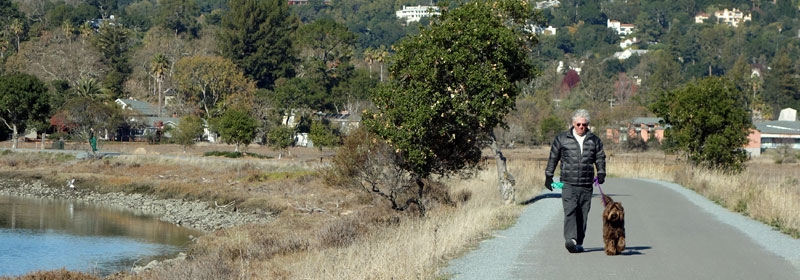 Image of person walking a dog on leash Corte Madera Creek Pathway