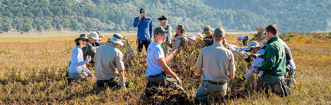 Marin County Parks Job Opportunities