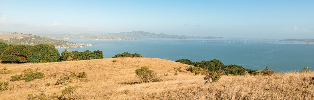View of the Bay from Ring Mountain Preserve