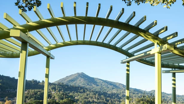 Hal Brown Park view of Mount Tam