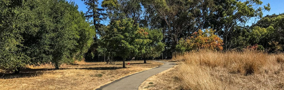 Lucas Valley Park