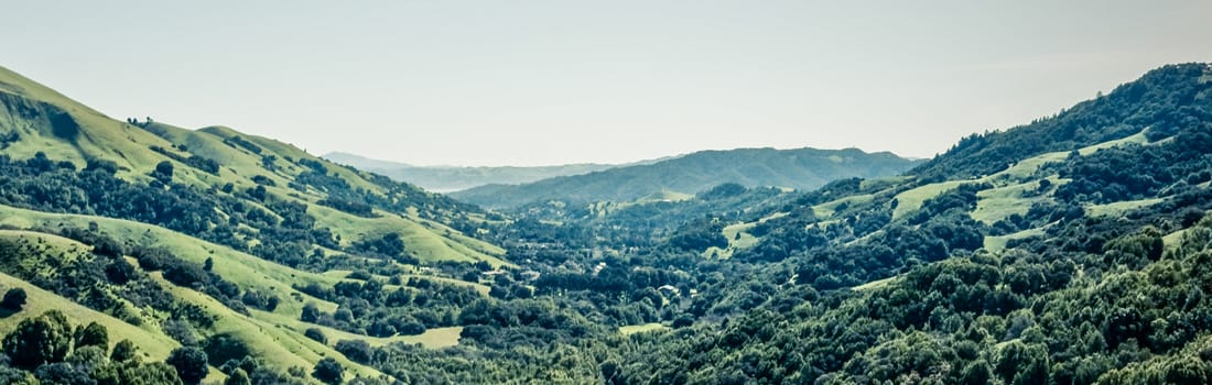 Lucas Valley Preserve