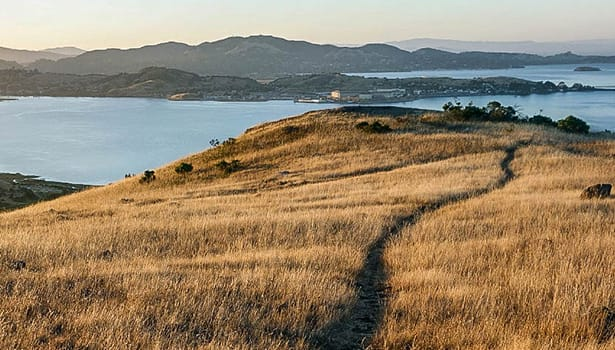 Trail overlooking the Bay