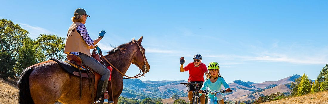 Horse rider and cyclists safely passing on the trail
