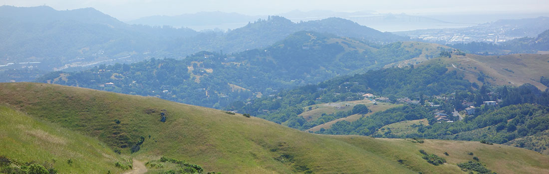 Mountain top view of all Marin