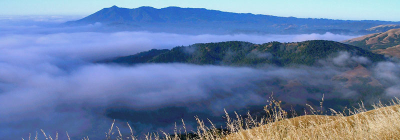 Marin County Parks Turns 40 - banner