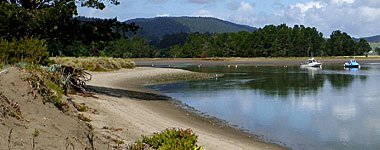 Bolinas Lagoon Feature